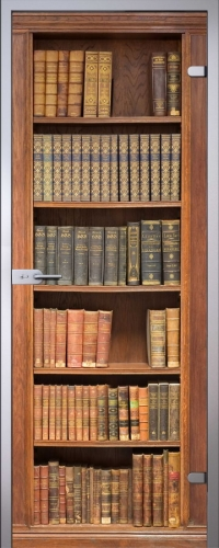 Стеклянная дверь Books АКМА