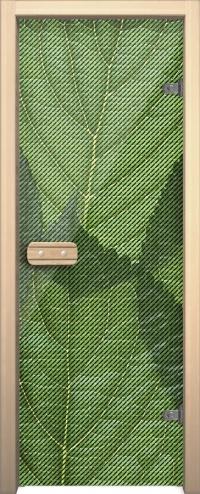 Двери для сауны Арт с рисунком ГлассДжет Листья зеленые